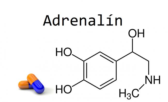 Adrenalín